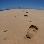 Leave Just Footprints
